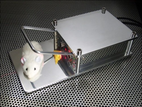 mousetrap-to-eradicate-mouse-from-house