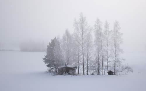 Finland  - Cold Weather:Snow Field